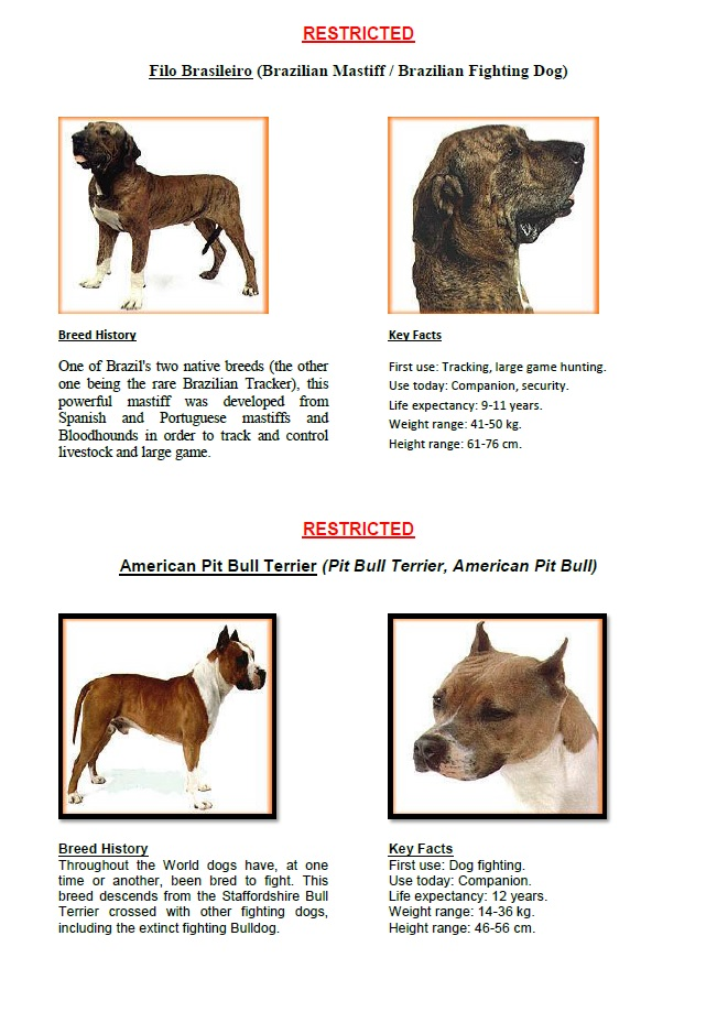 Restricted Breed Dogs PAGE 2