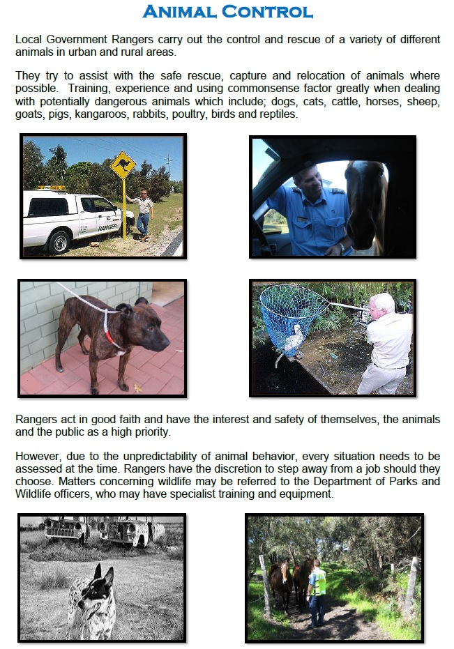 animal control page 1a